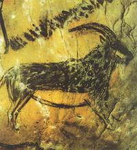 Козел (Франция, XV—X тыс. до н.э.)